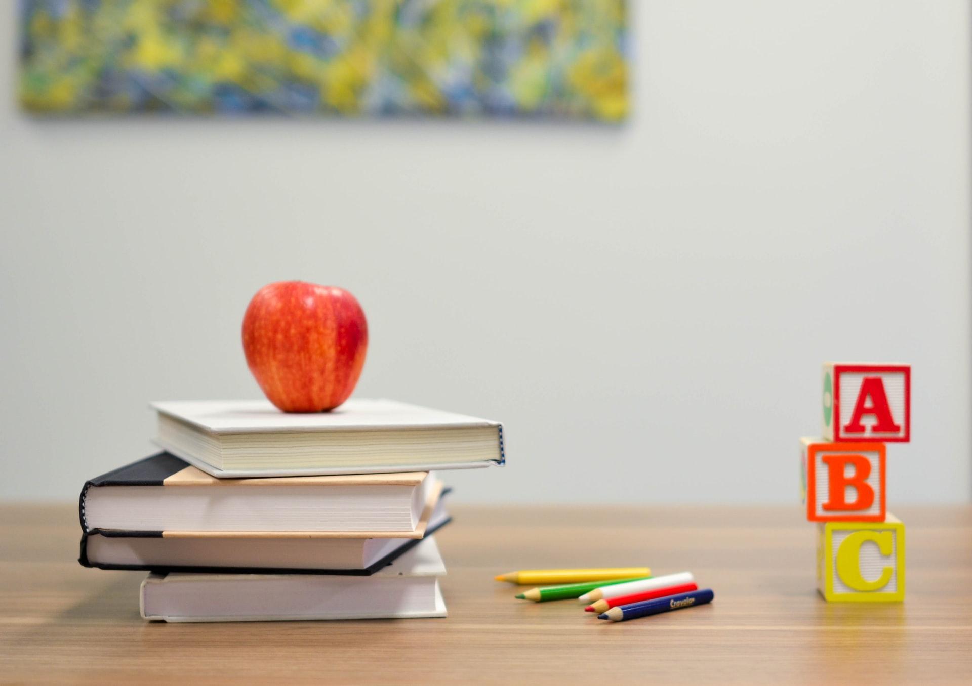 Viden omkring lektier og lektiehjælp
